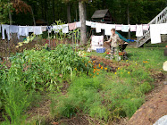 Our Garden and Laundry!
