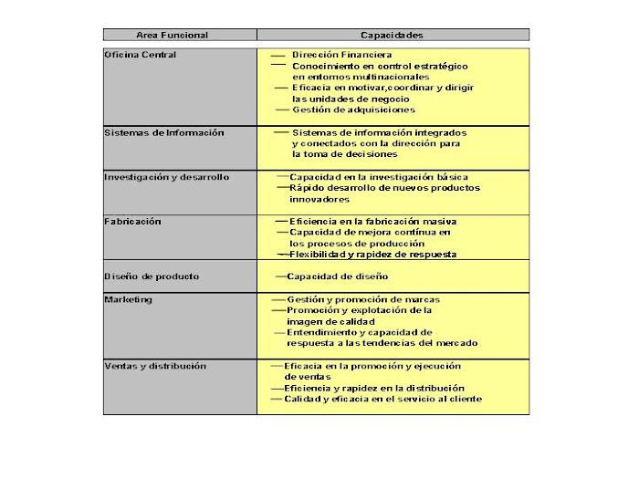 ESQUEMA 22. Ejemplo de clasificación funcional de capacidades