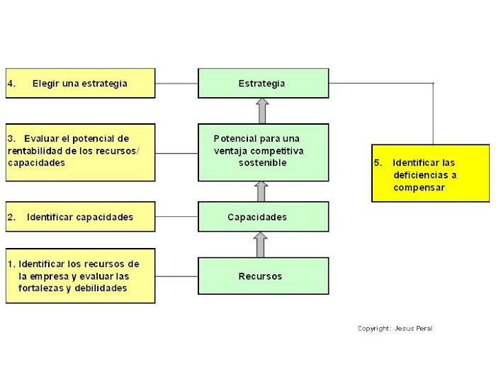 ESQUEMA 24. Análisis de recursos y capacidades