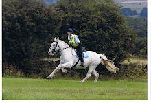 The War Horse...