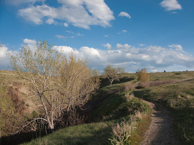 Standley Lake, Trail View