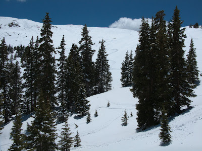 Loveland Pass Ski, View From Trees Below
