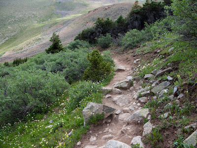 Missouri Mountain Run, Alpine Trail