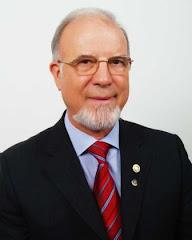 Governador D1970 - 2010/2011