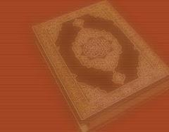 مواقع جهادية : منتديات الفلوجة الإسلامية - منتديات شموخ الإسلام - شبكة التحدى الإسلامية - شبكة معار