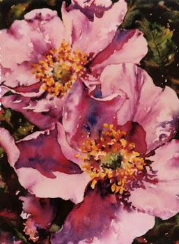 Sunny Alberta - Roses #10