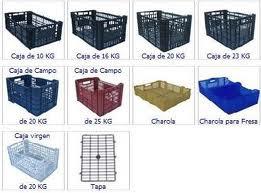 Palta peruana de exportaci n procesos agroindustriales for Cajas de carton puebla