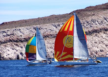 Eupsychia leading Isis in the Sea of Cortez Sailing week 2008