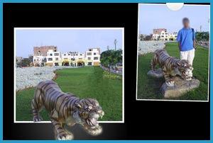 Nuevo Chimbote - El Tigre de Ancash
