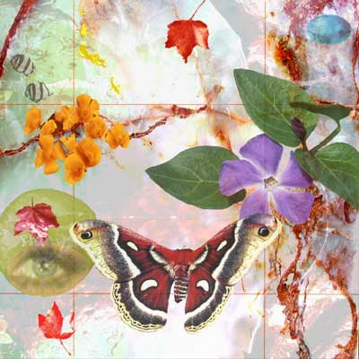 fotomontaje digital creado por pepeworks