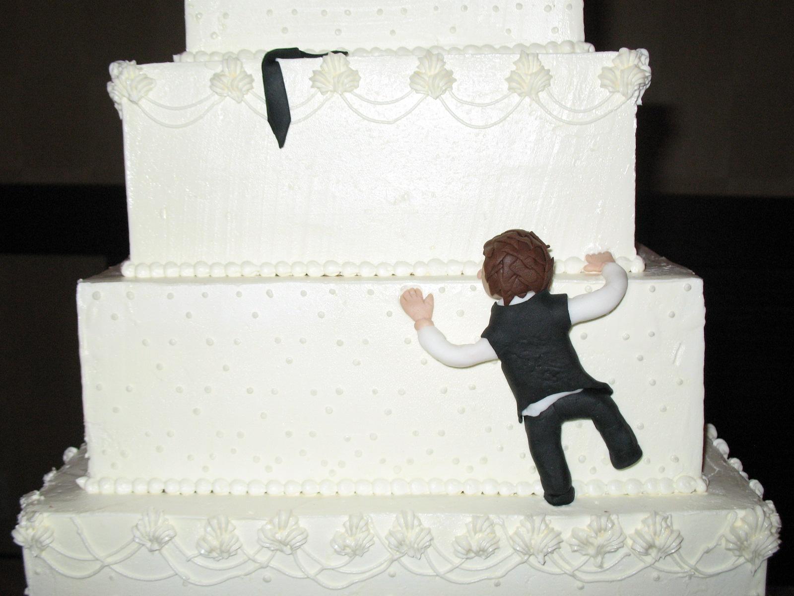 Many, many cakes: Amazing Crazy Cakes