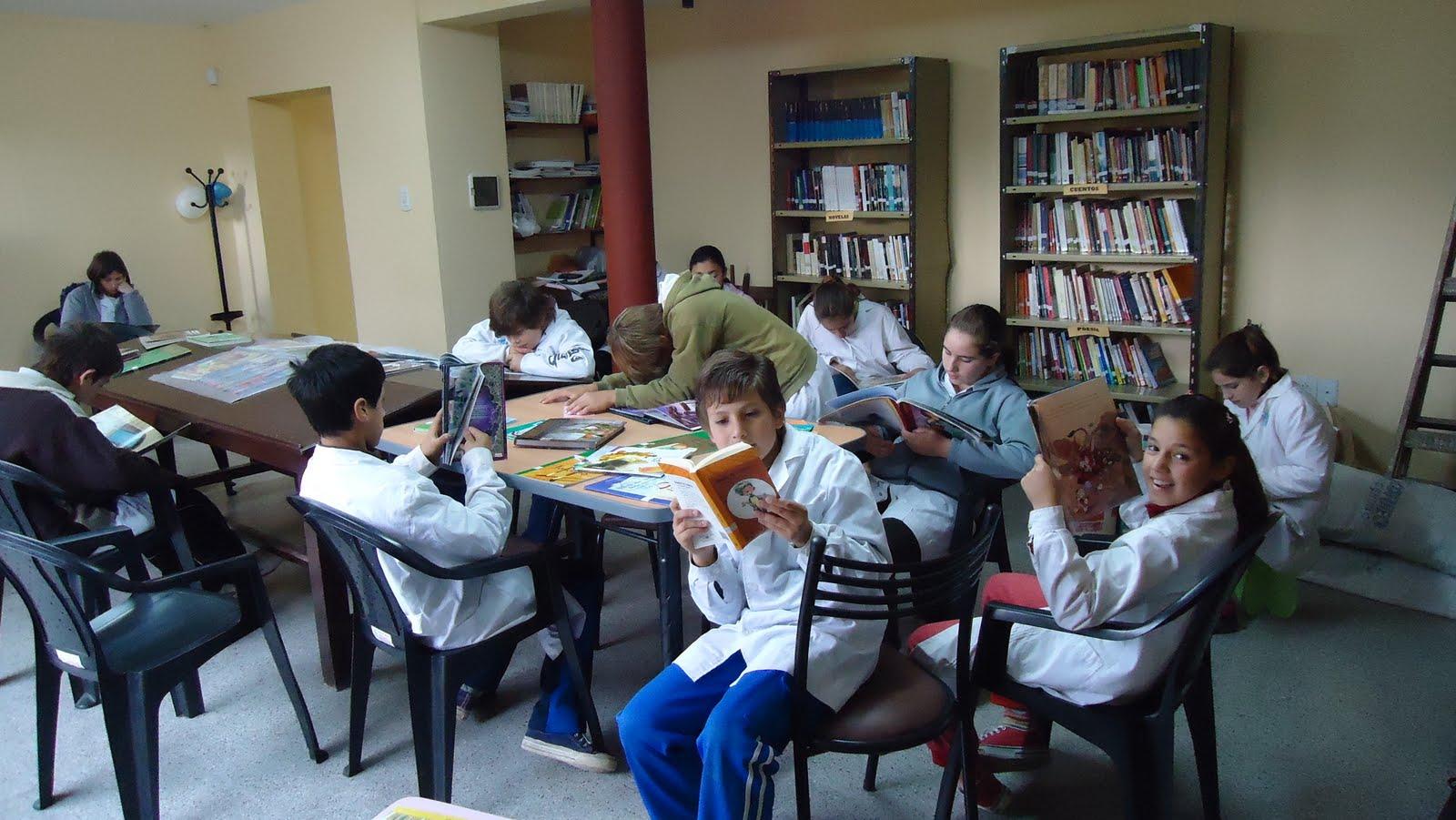 Libros aprobados por adulto joven por grado