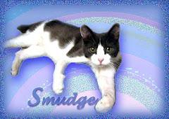 Smudge (2006-2008)