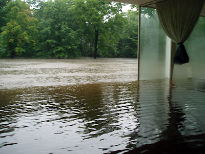 Farnsworth House flood water Mies Plano Landmarks Illinois