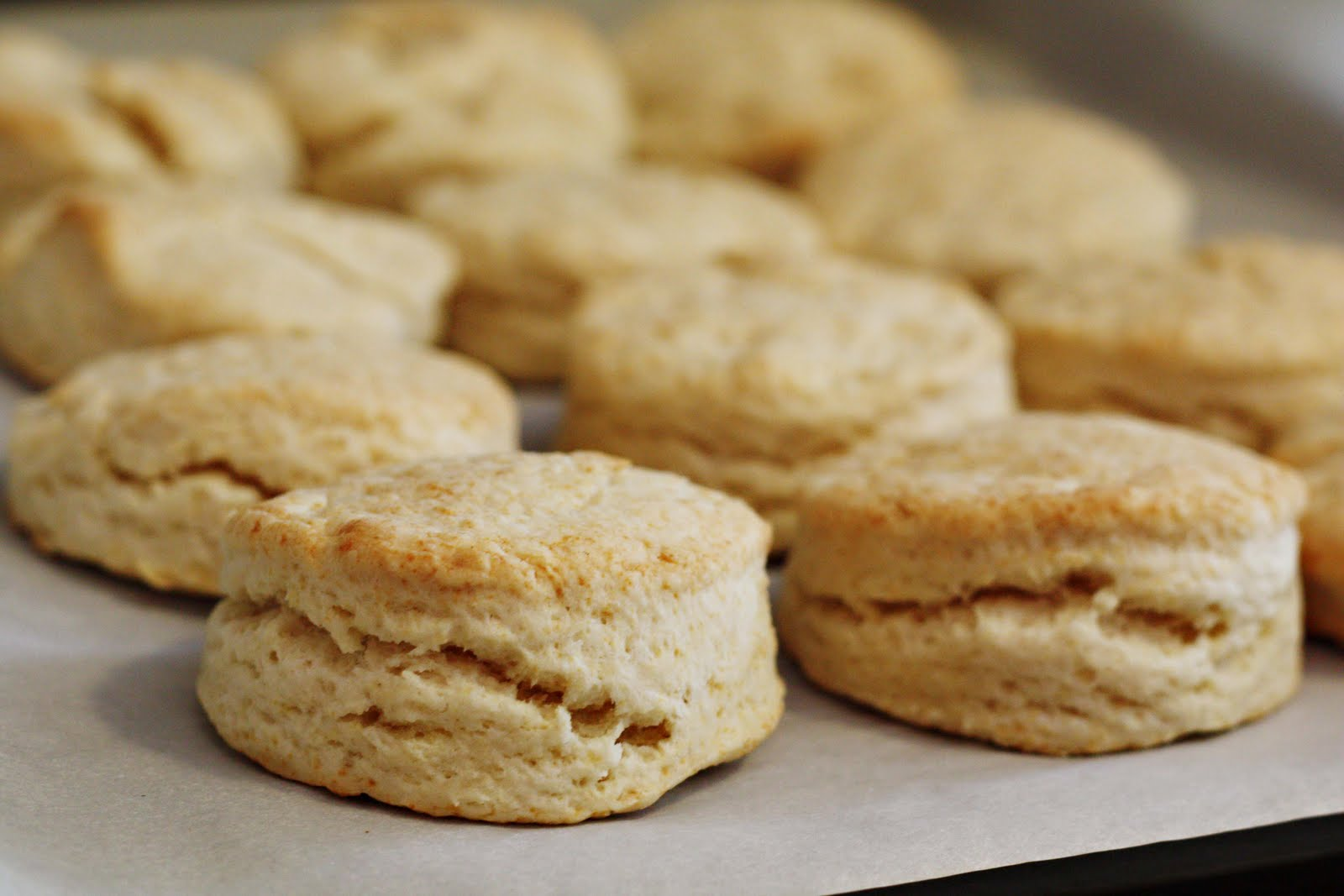 lily sweet white lily sweet cake biscuits southern biscuits biscuits ...