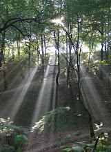 Awen manifestado pela Natureza