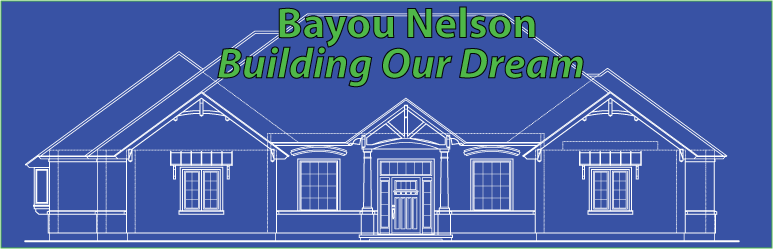 Bayou Nelson