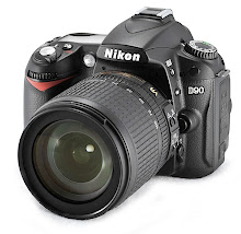 Currently snapping with the Nikon D90 & loving it!