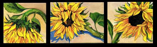 [sunflower+group]