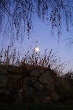 Höstmåne