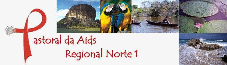 PASTORAL AIDS NORTE 1