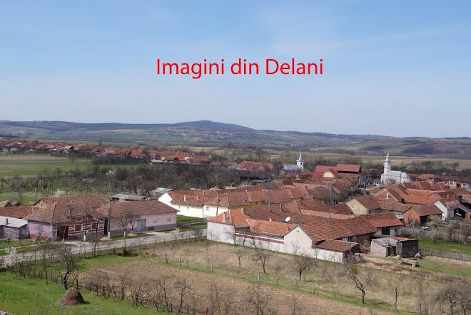 Imagini din Delani