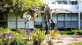 Google company dinosaur