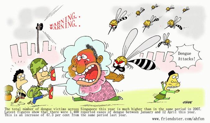 Informaci n para prevenir el dengue - Como eliminar a los mosquitos de mi cuarto ...
