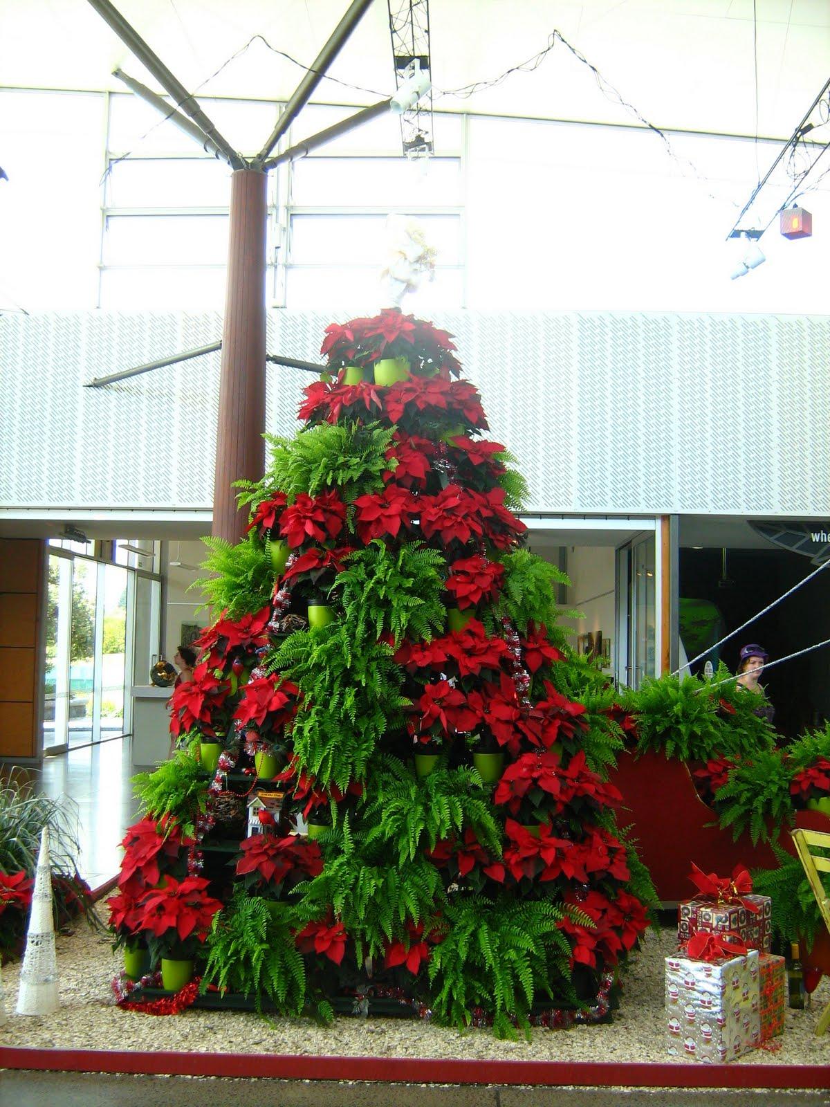 Poinsettia tree stand