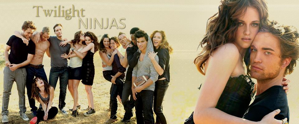 Twilight Ninjas
