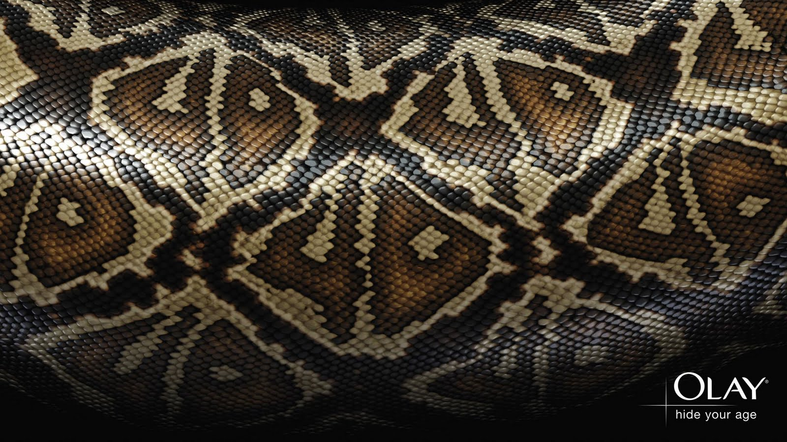 Snake Skin Wallpapers, Snake Skin Patterns Backgrounds, Snake Skin Textures