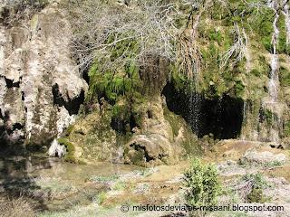 cauce rio cuervo
