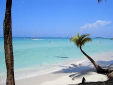 Jamaica pics