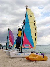What the heck is a Hobie Cat?