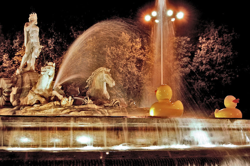 madrid neptuno fuente patitos nocheenblanco