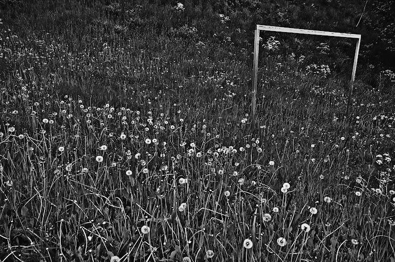 noruega blanco y negro porteria futbol
