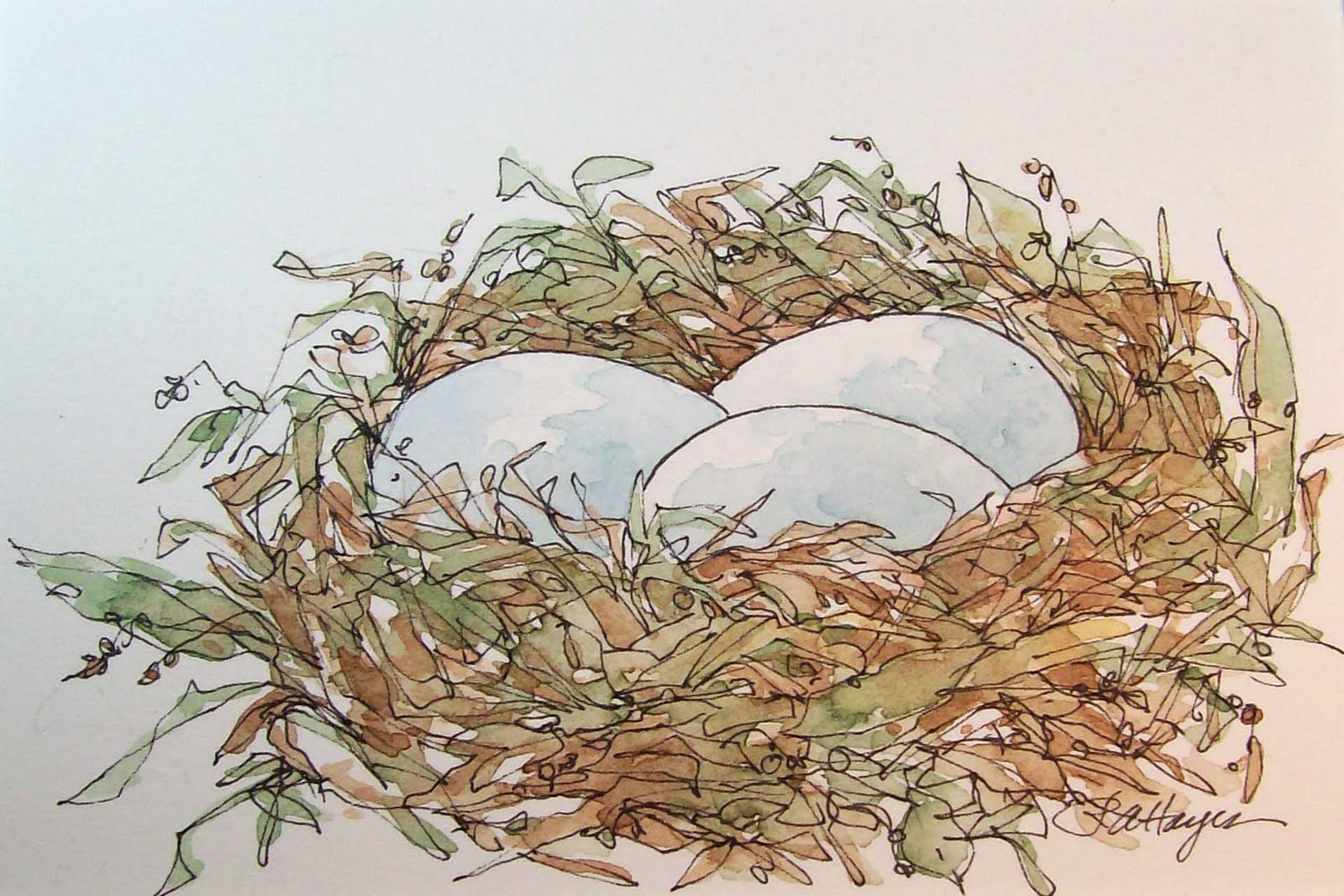 Drawing printout how to draw a bird nest - Bird Nest In Tree Drawing Photo 25