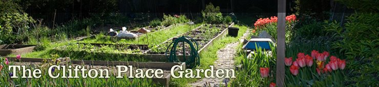 The Clifton Place Community Garden