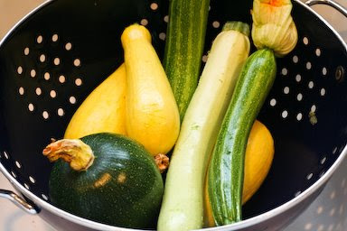 Summer Squash in Colander