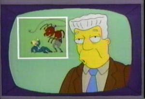 las 5 hormigas mas peligrosas del mundo