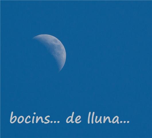 bocins de lluna
