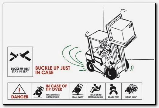 seat belt archives