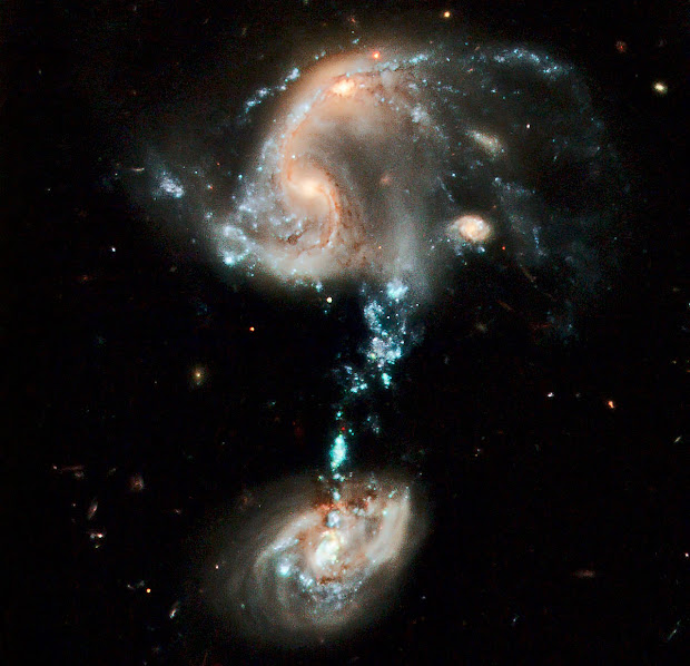 Arp 194, a cosmic fountain of stars brilliantly portrayed by Hubble