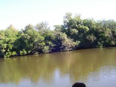 Rio Rosario. desde el Puente Negro. LA PAZ. COL. PIAMONTESA