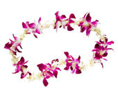 Fresh flower lei greeting available
