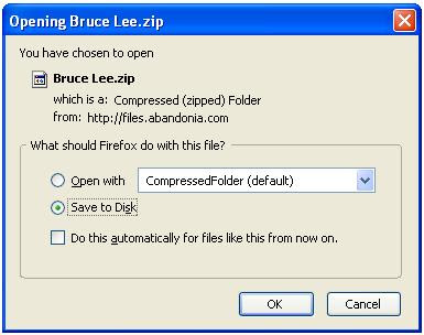 Saving Bruce Lee zip file