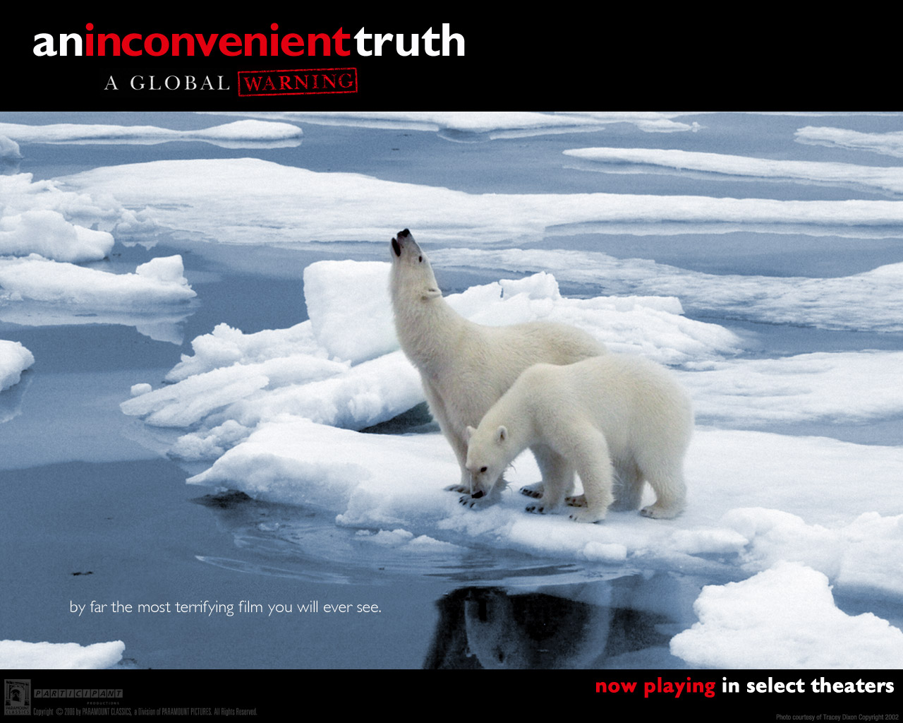 inconvenient truth al gore global warming Now told us the inconvenient truth about global warming  the new documentary by al gore his film an inconvenient truth draws the attention of.