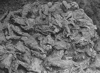 Srebrenica Genocide - Mass Graves