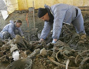 """Serbian paper condemns """"hysterical"""" Srebrenica blame campaign"""