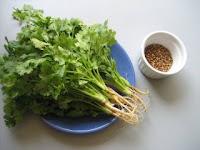 Plantes aromatiques, graines, noix, légumes, poissons, épices ... dans la Cuisine Marocaine Coriandremain